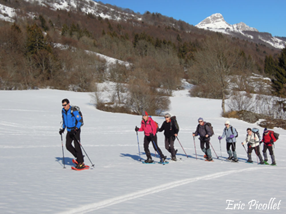 Snowshoeing in French Alps, groups, children, work councils, schools